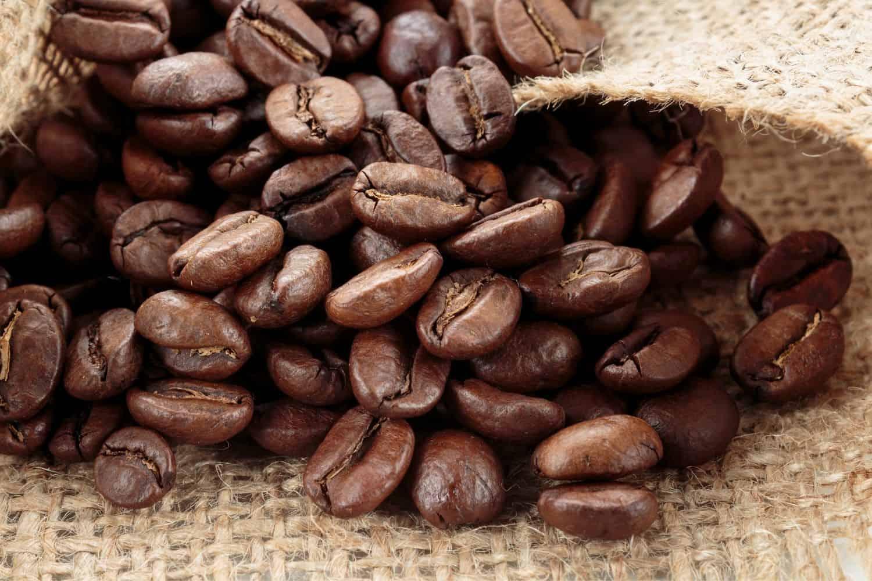 arabica coffee beans.