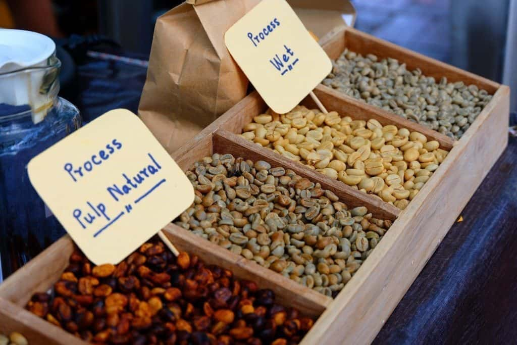 coffee beans with different processing methods - wet, dry, pulp natural, and honey process.