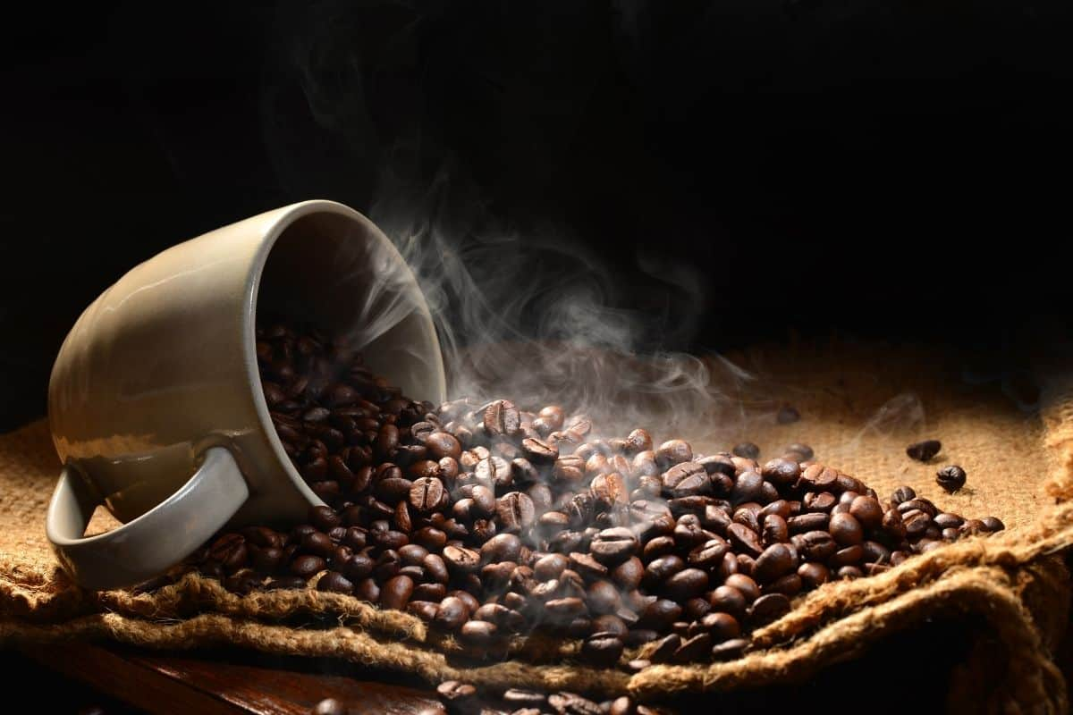 freshness of coffee beans.